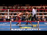 HBO Boxing: Sergio Martinez vs. Paul Williams II Highlights (HBO)