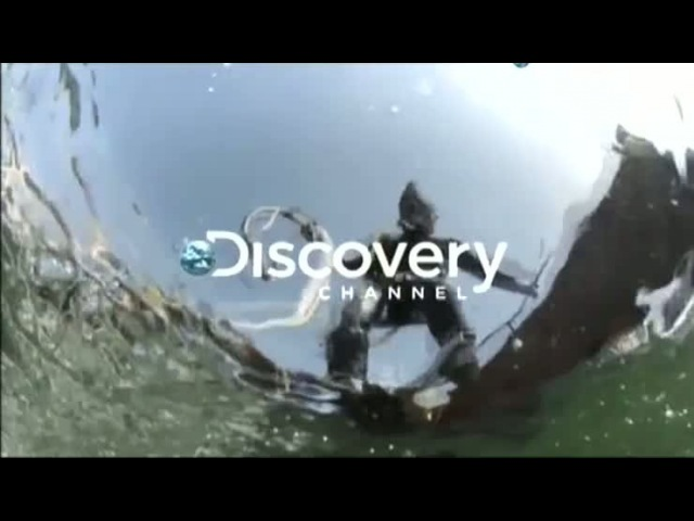Discovery Золотая лихорадка Берингово море Трейлер