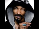 Snoop Dogg Drop It Like It's Hot DUBSTEP REMIX