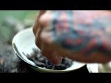 Шен .mp4 Красивее видео о чае пока не видела