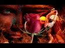 Amadeus Mozart - Piccola Serenata Notturna