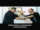 Wprowadzenie do I Liq Chuan Sifu Sam F S Chin polish subtitles