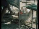 Дневник,письмо и первоклассница 1 серия Узбекфильм,1984