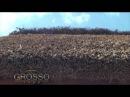 Grosso Odessa - Кровли из камыша