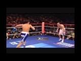 Sergio Martinez Highlights (NEW).wmv
