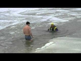 Моржи придунавья. 3 февраля 2012 на Дунае