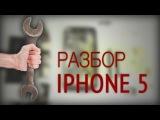 Как разобрать iPhone 5? Инструкция по разбору и сбору