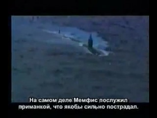 Правда о гибели подводной лодки Курск, предательство власти!