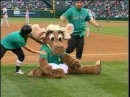 Massive Monkees Seattle Mariners performance featuring the Mariner Moose