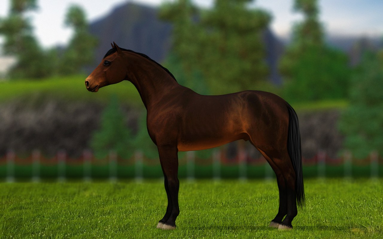 Регистрация лошадей в RHF 1.1 - Страница 37 RGjGiSL2wbA