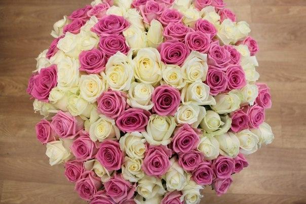 цветы миасс