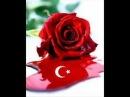Ankara oyun havasi - Geliver Kibar Kiz
