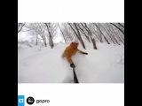 cherenkova_veronika video