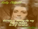 Sally Oldfield - Bird of Paradise