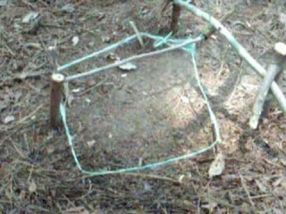 How To Build A Spring Snare Trap.