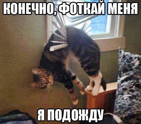 http://cs607930.vk.me/v607930717/334b/gM1vXDwcYfs.jpg