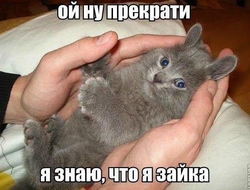 http://cs607930.vk.me/v607930999/51c5/97kaqFYpGq0.jpg