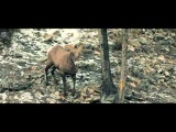Mark Otten - Hyperfocus (Wezz Devall Remix) Tune Of The Week
