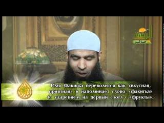 Как завоевать сердце жены - Мус'ад Анвар. Смотреть всем Братьям!!!!