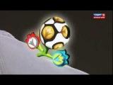 Божья коровка на Евро-2012