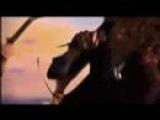 Cajun Dance Party - 'Amylase'