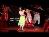 Star Parivaar Live LG Arena Birmingham - Arnav Khushi Dance Performance Halkat Jawani