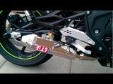 Kawasaki ER6n w/ Yoshimura Exhaust Walk Around and Start Up
