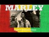 Bob Marley | Early Tuff Gong Days