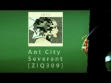 HD Kuedo - Ant City