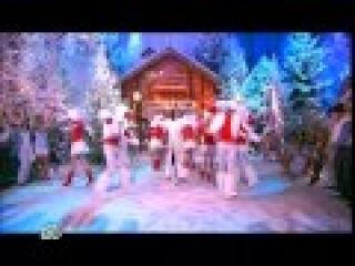 София Ротару - Белая зима, Новый год в деревне