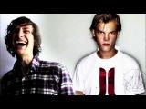 Avicii - Levels VS Gotye ft Kimbra - Somebody that I used to know