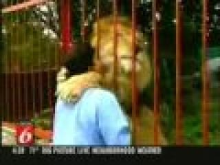 Лев и его любимая женщина