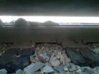 Тупица лёг под поезд и вылез на ходу