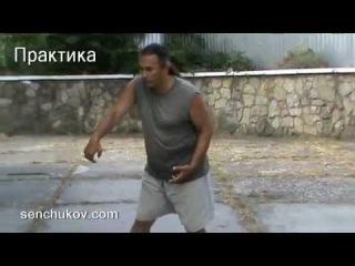 Сенчуков: ЦИГУН для боевых искусств и фехтования.