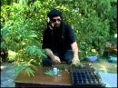 Хорхе Сервантес - Высший пилотаж выращивания конопли 3