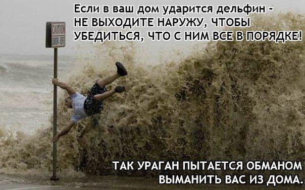 http://cs608330.vk.me/v608330717/425f/n-rL1Y2V9Mw.jpg