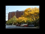 125th Street &amp Broadway My Old Stomping Ground General Grant Projects Harlem New York City part 1