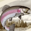 Рыбалка с Aquatic