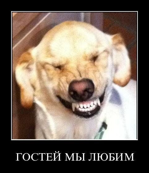 Всяко - разно 29 )))