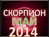 гороскоп скорпион  май 2014  гороскоп. астрологический прогноз для знака скорпион на  май 2014