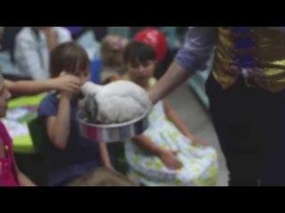 Детские фокусы с кроликом: Антон Шаклеин, Антуан Шоу - Москва