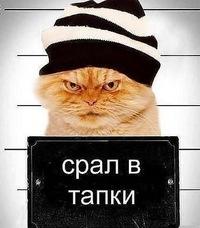 Влад Третьяков, 5 марта , Новокузнецк, id185289462