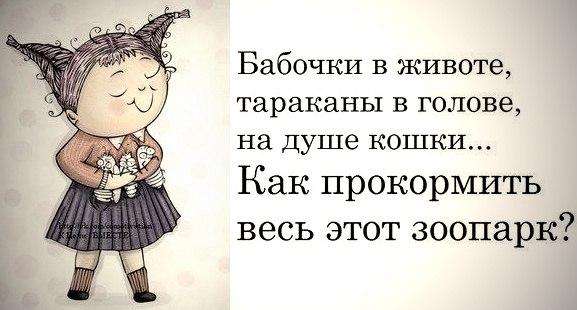 http://cs6140.userapi.com/v6140696/1f7a/r6HQ2uNptaY.jpg