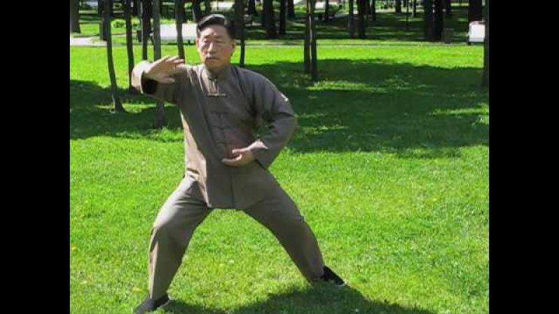Chen Taiji in Russia - Chen Xiaowang