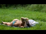 1606206_spy_rus_voyeur_public_park_flash_girl_nv