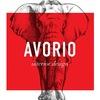 Avorio Design