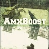 AMXboost