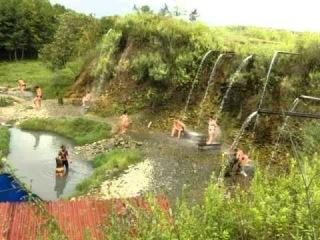 Абхазия. Эвкалиптовая роща. Грязевые ванны.AVI