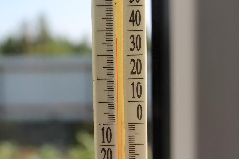 Жара - Как спасти растения от жары