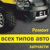 Авто-Кеды
